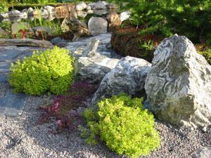 Sten i trädgården bilder